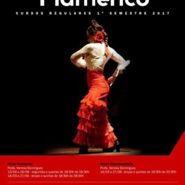 Horários de Flamenco no Instituto Cervantes